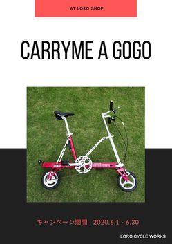 carrymeagogo.jpg