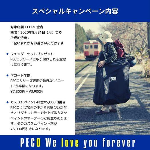 PECOWeloveyouforever2.jpg