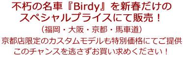 2019-2020_birdy_sprice_text.jpg
